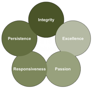 STS Values